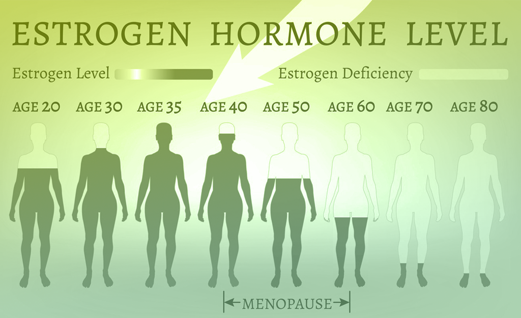 Estrogen Hormone Level